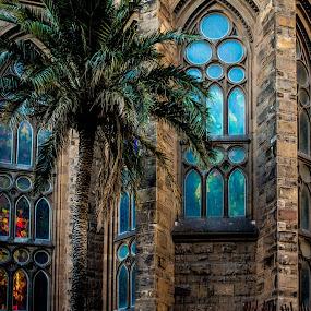 Sagrada Familia by Will Ballew - Buildings & Architecture Architectural Detail ( barcelona )