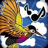 Birds Sounds: Call of Nature