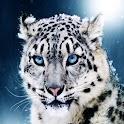 3D cool tiger logo
