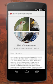 Birdlife of North America Free Screenshot 1