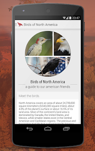 Birds of North America Free - screenshot thumbnail