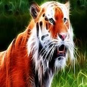 3D Tiger10
