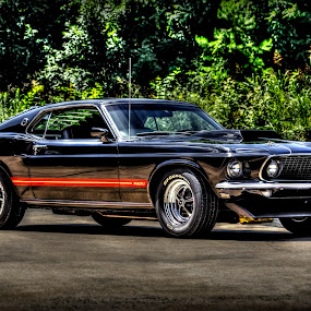 MACH-1 by RomanDA Photography - Transportation Automobiles ( mustang, hdr, mach-1, classic )