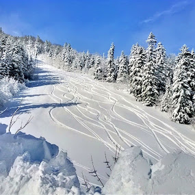 ski slope by Lejla Hadziabdic - Instagram & Mobile Other ( #skislope #snow #skiing #mountains #landscape #white )