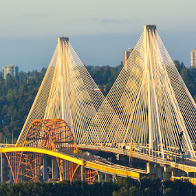 Out with a little old, in with a bigger new by E.g. Orren - Transportation Roads ( port mann bridge, photo by ego, bridge construction roadway, vancouver,  )