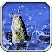 Freshwater Fishing - ID, Lures