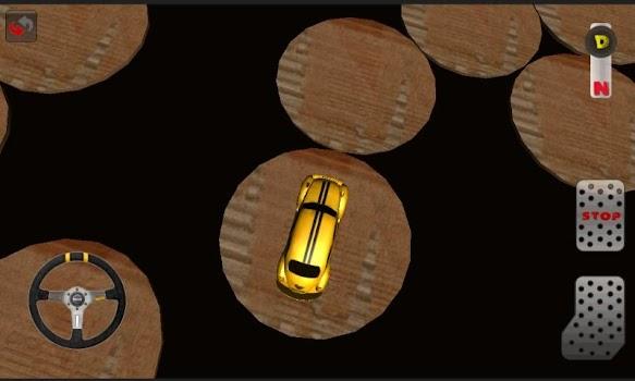 Car Driver 1 (Parking)