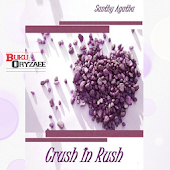 Novel Crush In Rush
