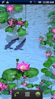Screenshot of Arowana Paradise Trial