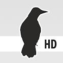 Zaytung icon
