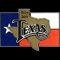 Billy Bob's Texas icon