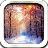 Winter Relax Live Wallpaper