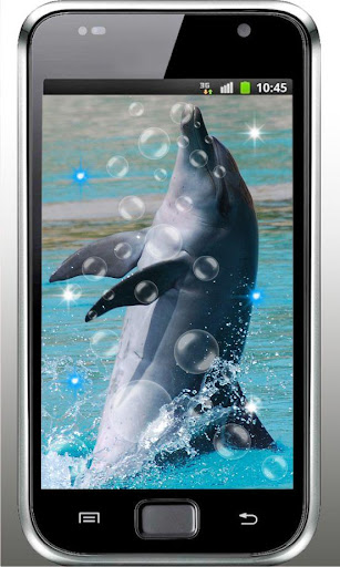 Dolphin Foto HQ live wallpaper