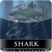 sharks attack live wallpaper