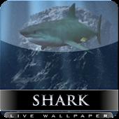 sharks attack live wallpaper