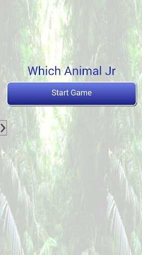 Which Animal Jr