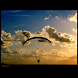 Paragliding illustrated