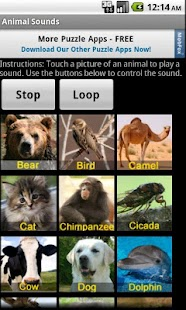 Animal Sounds - screenshot thumbnail