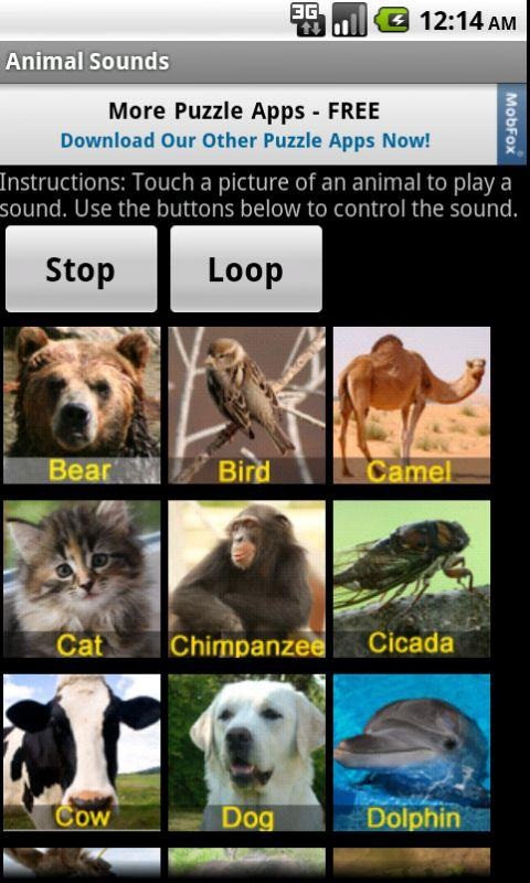 Animal Sounds - screenshot