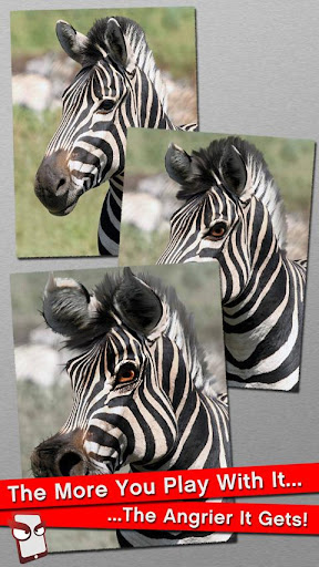 Angry Zebra Free