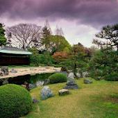 No-Stress: Garden Sounds