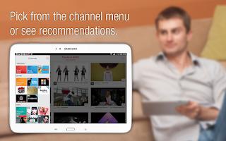 Screenshot of Flipps for Sony Tablet