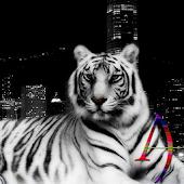 White Tiger eXperiance Theme
