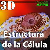 Estructura de la célula 3D