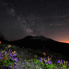 by Michael White - Landscapes Starscapes