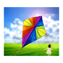 Kites in the air icon