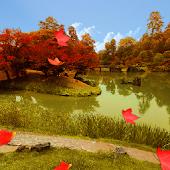 Gardens in Autumn Trial