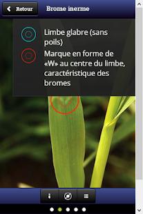 玩免費書籍APP 下載Plantes fourragères app不用錢 硬是要APP
