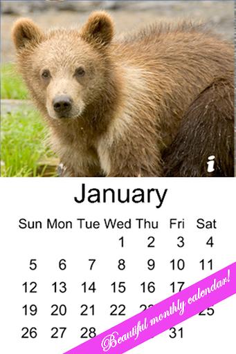 Bear Cub Calendar 2014
