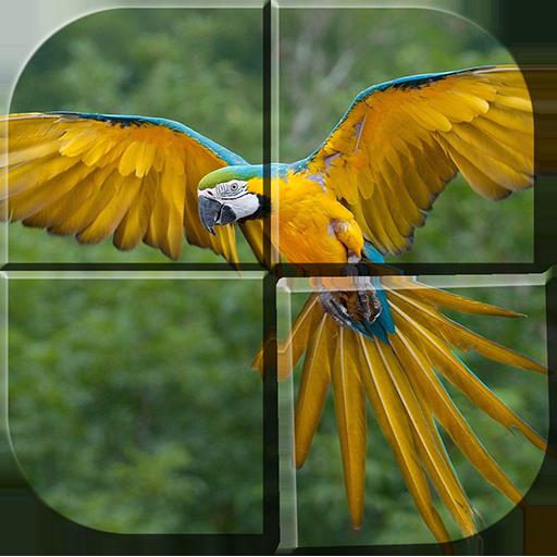 解谜の無料鳥類のパズルゲーム アプリ LOGO-記事Game