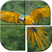 Bird Picture Puzzle Games Free