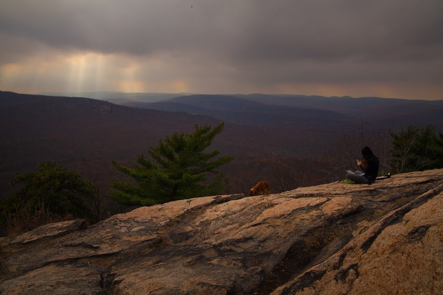 View from the Top by Marc Brian Queyquep - Landscapes Mountains & Hills ( dogs, nature, fall, bear mountain, rocks )