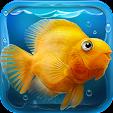 iQuarium - .. file APK for Gaming PC/PS3/PS4 Smart TV