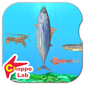 Delicious! SeaCreatures -Simple Kids FREE Game -