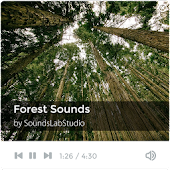 Forest Sounds - Mind Therapy