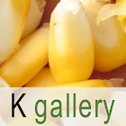 K gallery icon