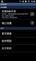 Screenshot of 远程adb