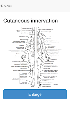 【免費醫療App】OrthoAnatomy (Brancel)-APP點子