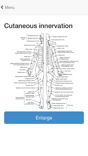 玩免費醫療APP|下載OrthoAnatomy (Brancel) app不用錢|硬是要APP