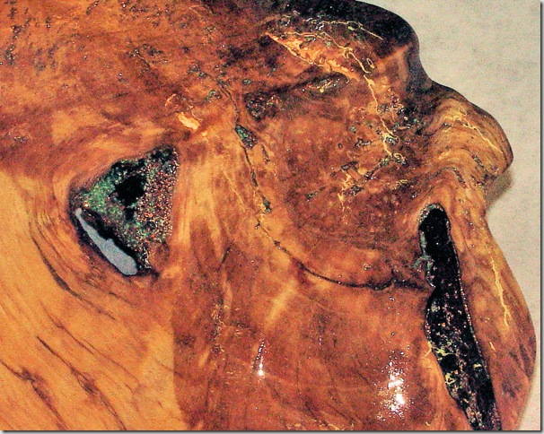 Burl Bowl - Detail 2