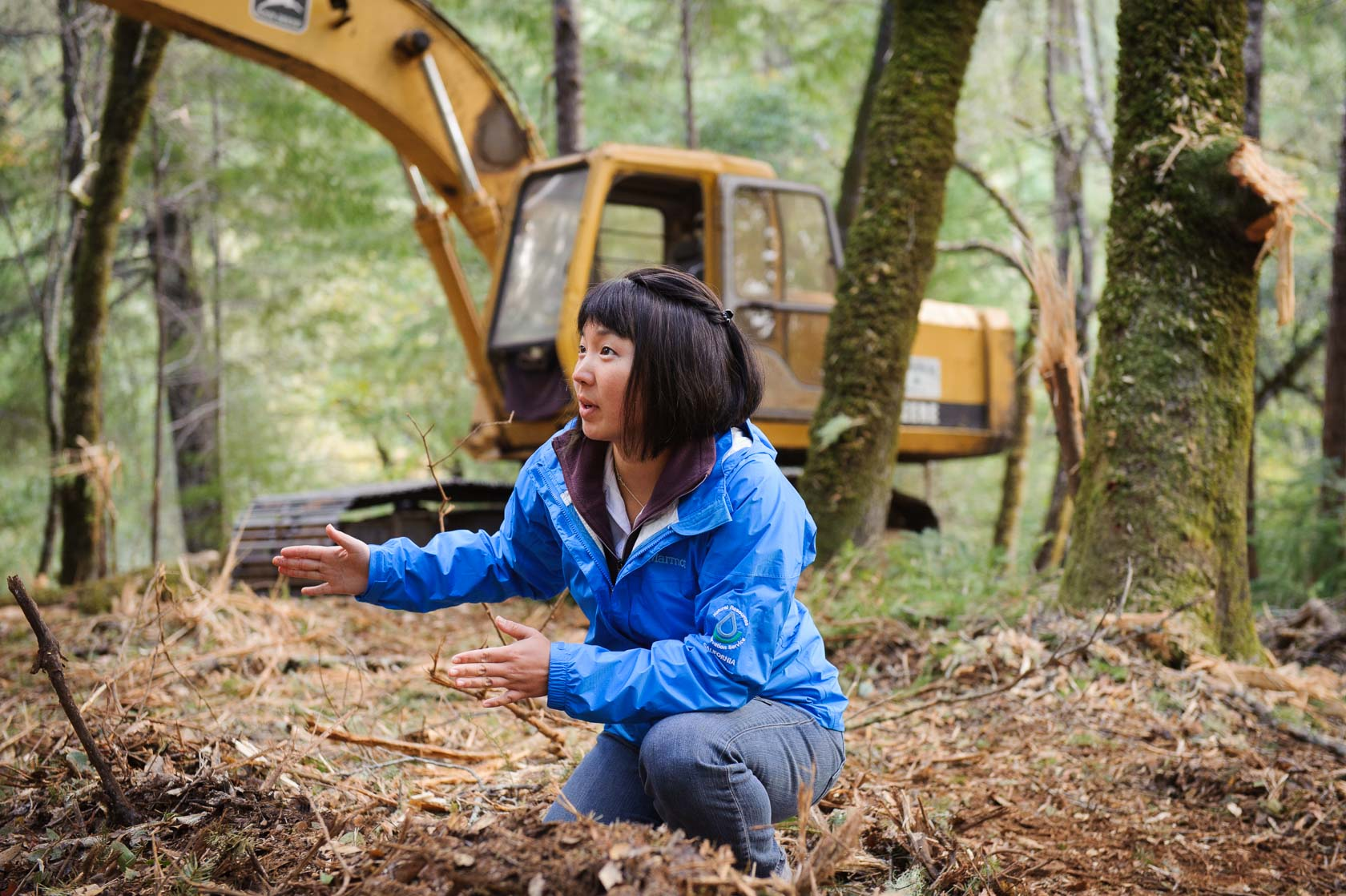 Forestry + Soil Consulting, California