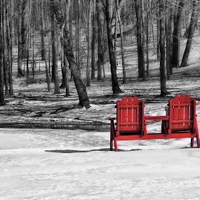 The Red Seat by Vivian Gordon - Landscapes Weather
