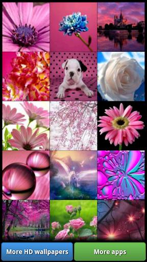 Pretty Pink Color HD Wallpaper