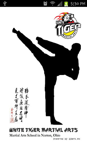Come by and get a free Martial Arts lesson by expert martial arts instructors in Marietta! We teach Taekwondo classes that are great for kids teens and adults!