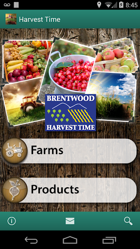 Harvest Time in Brentwood