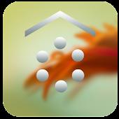 SL Touchwiz Theme